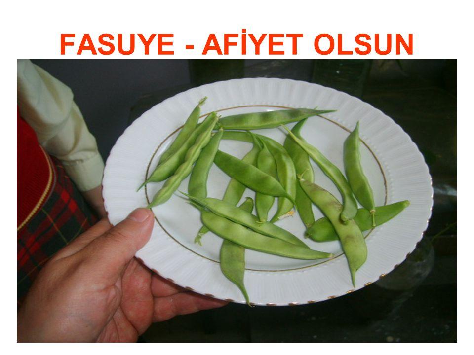 FASUYE - AFİYET OLSUN