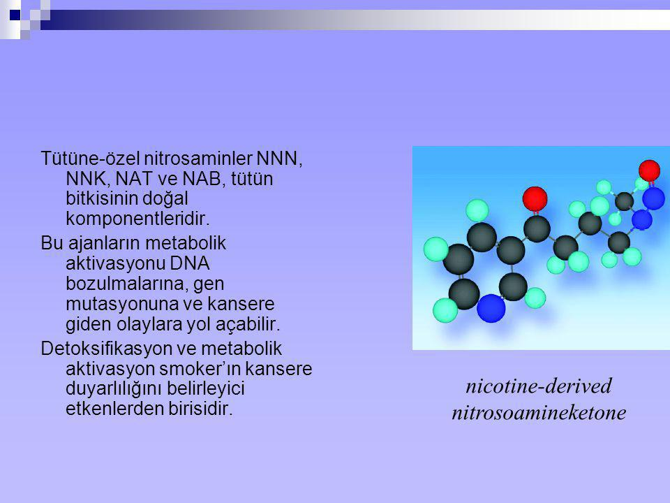 nicotine-derived nitrosoamineketone