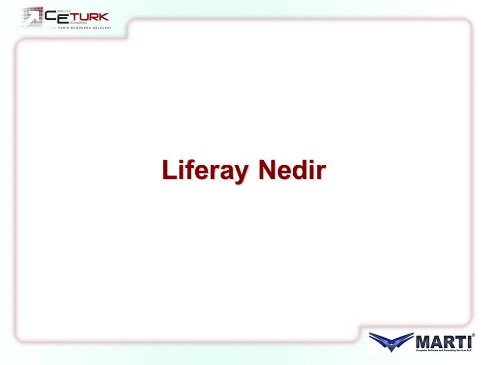 Liferay Nedir