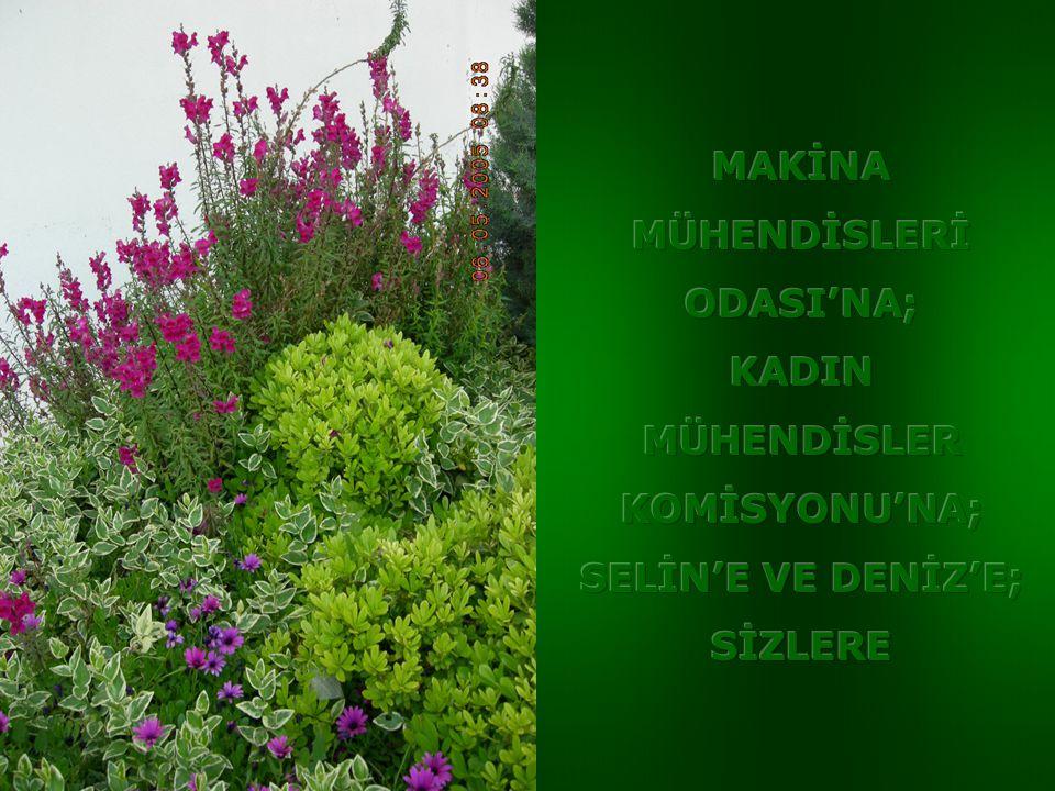 MAKİNA MÜHENDİSLERİ ODASI'NA; KADIN MÜHENDİSLER KOMİSYONU'NA; SELİN'E VE DENİZ'E; SİZLERE