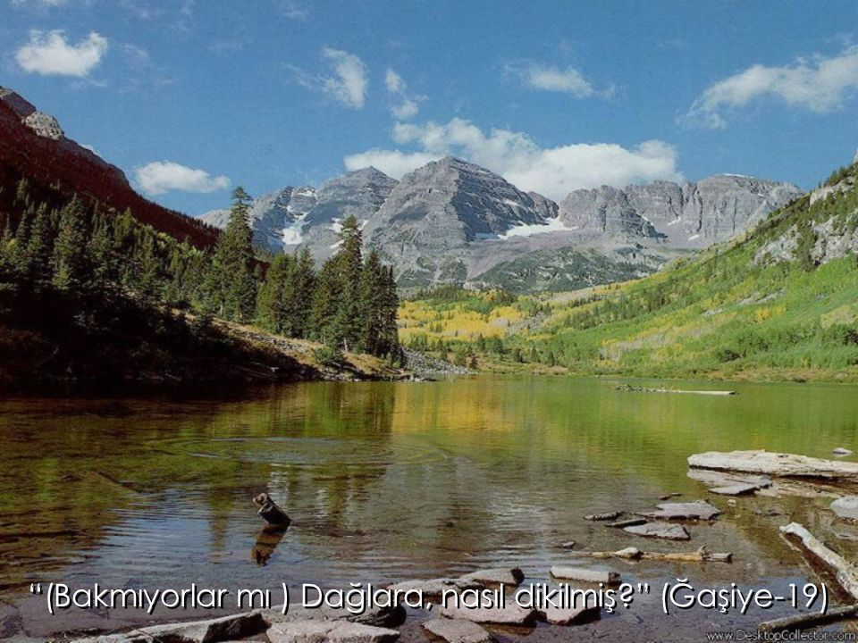 (Bakmıyorlar mı ) Dağlara, nasıl dikilmiş (Ğaşiye-19)