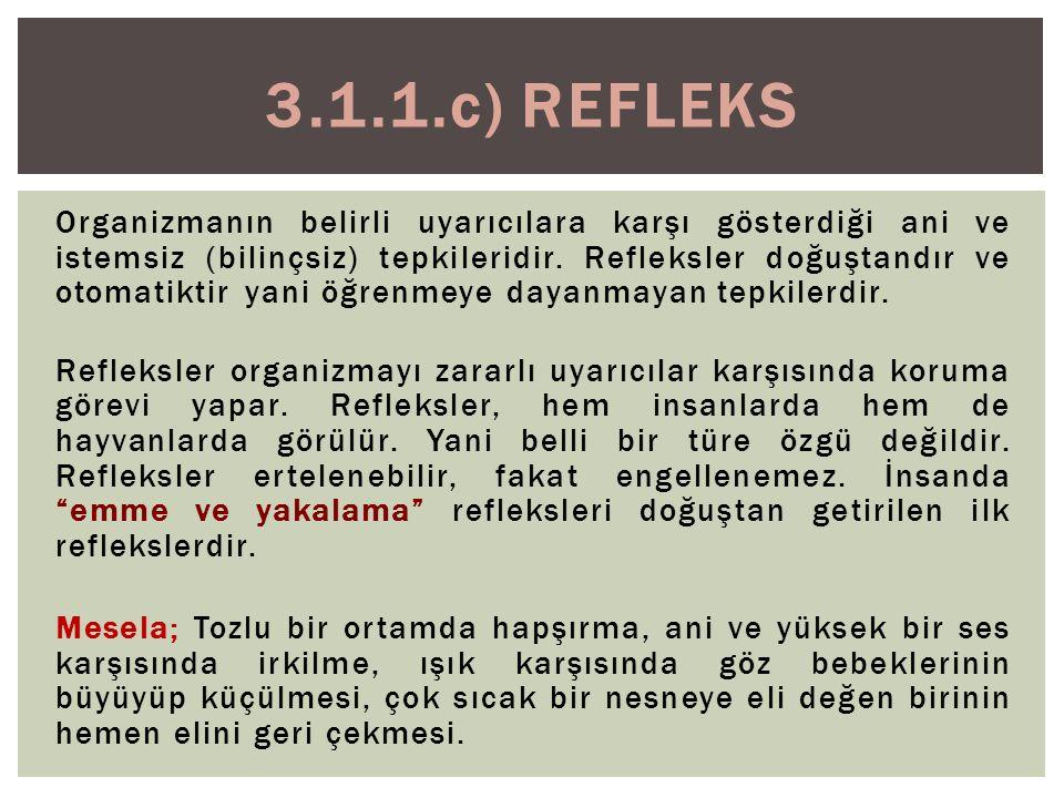 3.1.1.c) Refleks