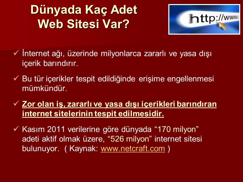 Dünyada Kaç Adet Web Sitesi Var