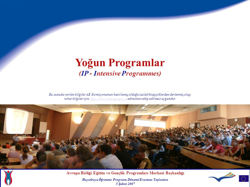 Yoğun Programlar (IP - Intensive Programmes)