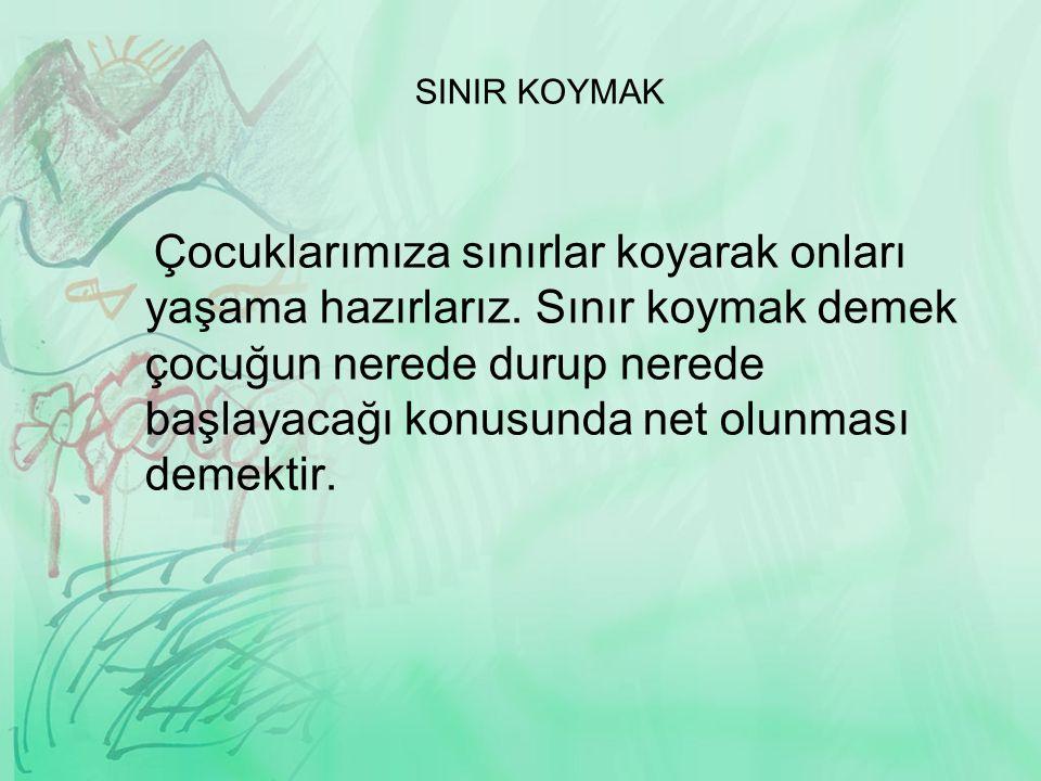 SINIR KOYMAK