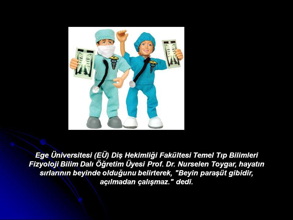 Ege Üniversitesi (EÜ) Diş Hekimliği Fakültesi Temel Tıp Bilimleri Fizyoloji Bilim Dalı Öğretim Üyesi Prof.