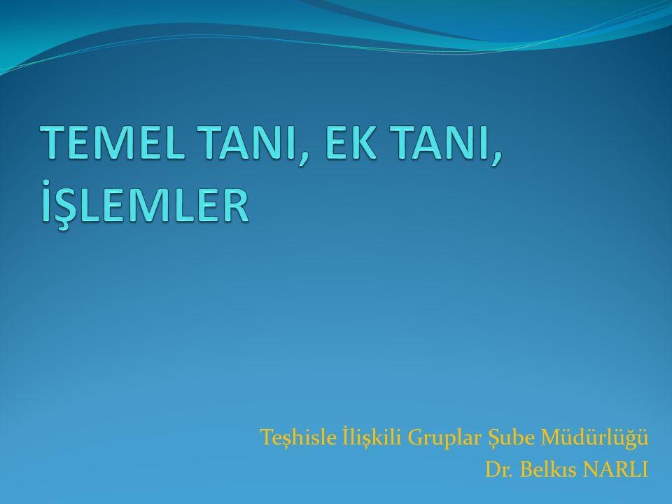 TEMEL TANI, EK TANI, İŞLEMLER