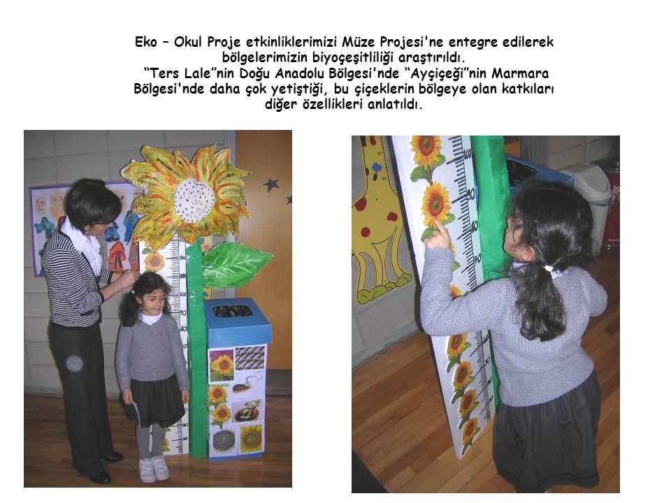 Eko – Okul Proje etkinliklerimizi Müze Projesi ne entegre edilerek bölgelerimizin biyoçeşitliliği araştırıldı.