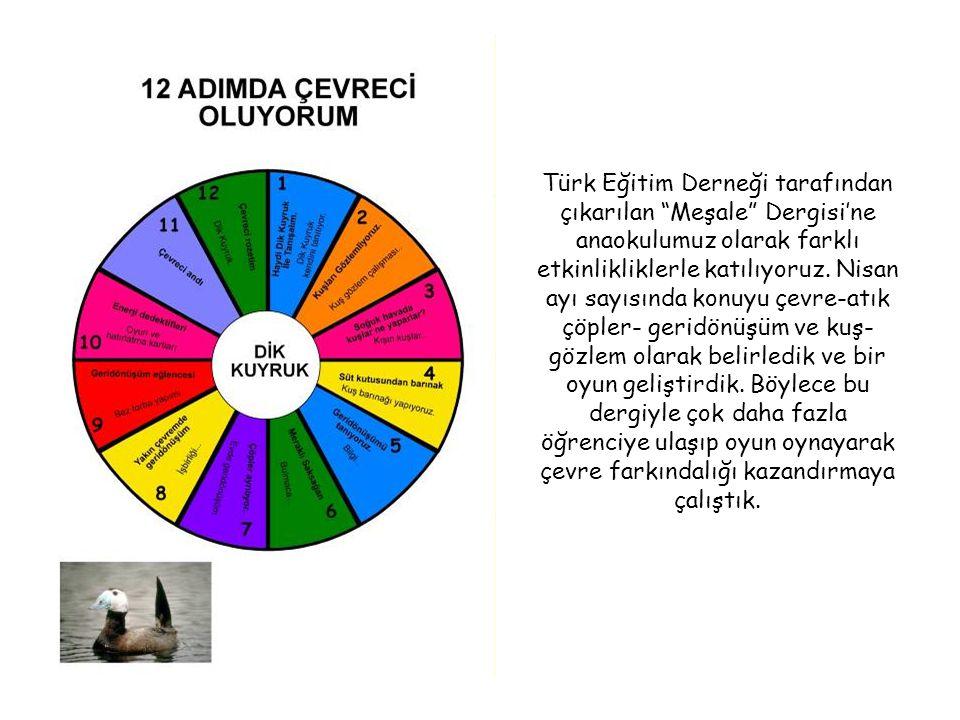 Türk Eğitim Derneği tarafından çıkarılan Meşale Dergisi'ne anaokulumuz olarak farklı etkinlikliklerle katılıyoruz.