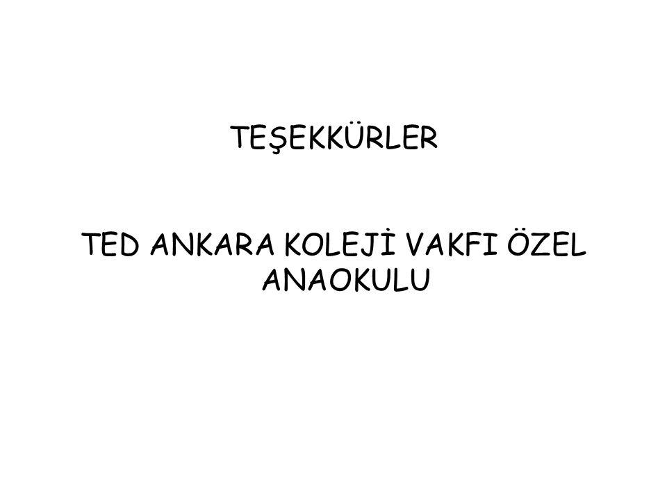TED ANKARA KOLEJİ VAKFI ÖZEL ANAOKULU
