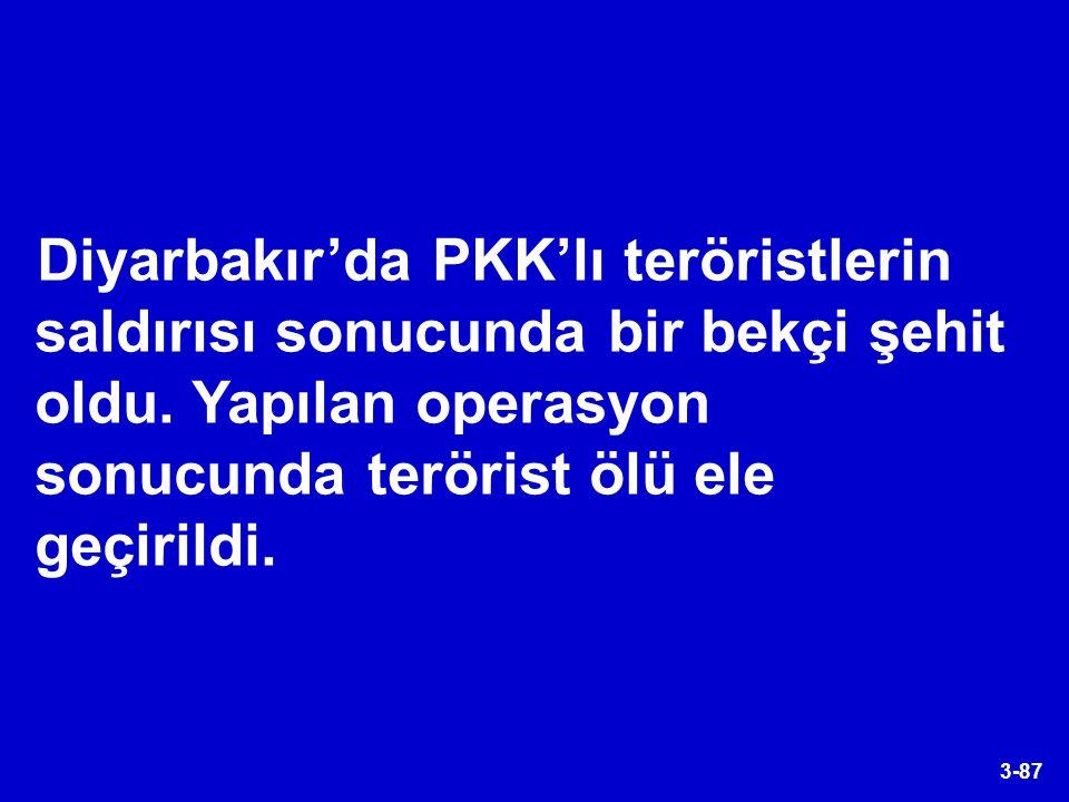 Diyarbakır'da PKK'lı teröristlerin saldırısı sonucunda bir bekçi şehit oldu.