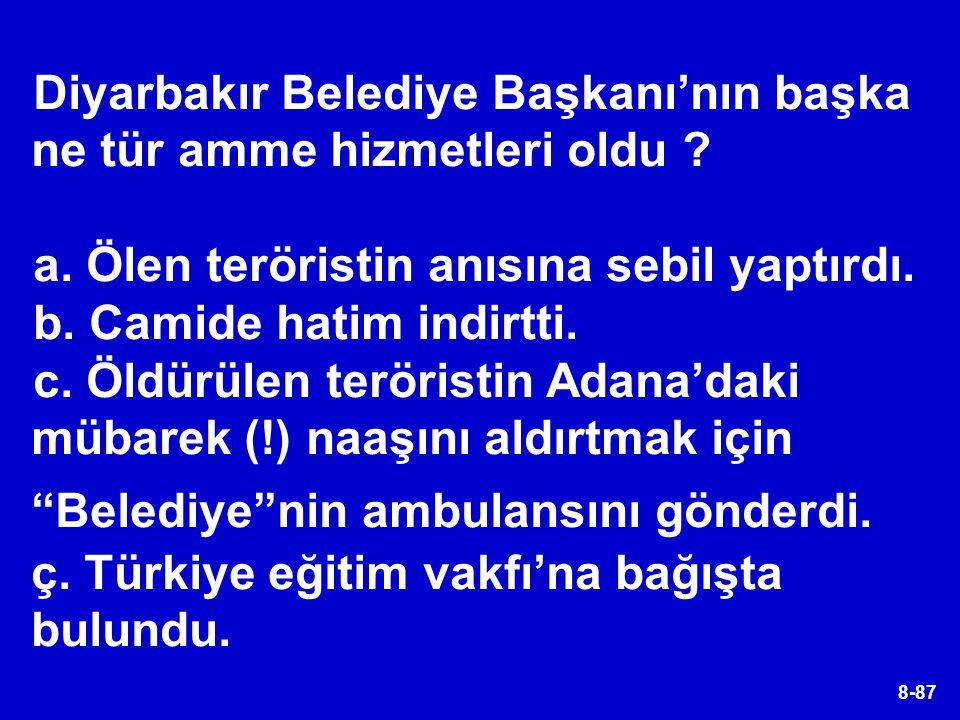 Diyarbakır Belediye Başkanı'nın başka ne tür amme hizmetleri oldu
