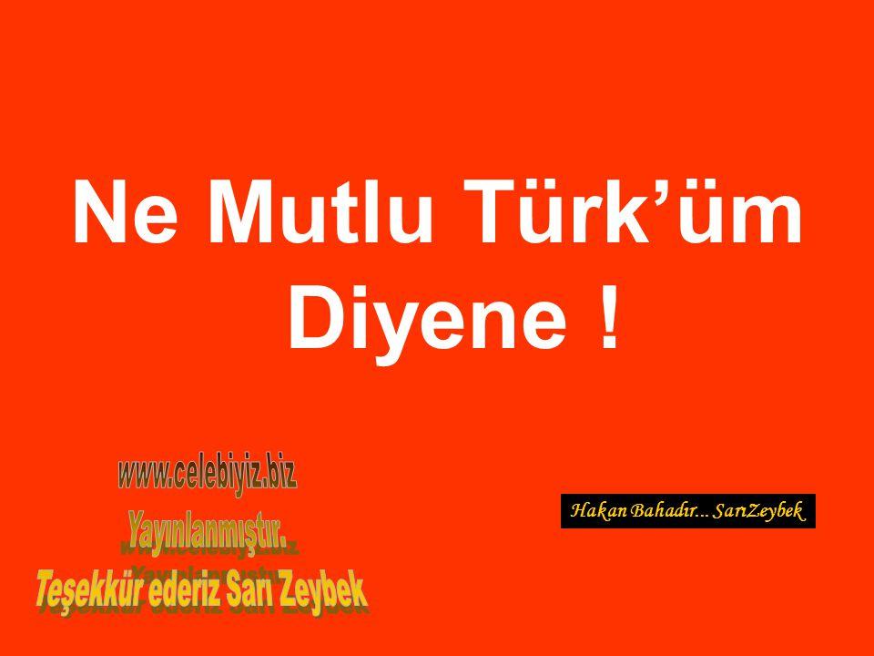 Ne Mutlu Türk'üm Diyene ! Teşekkür ederiz Sarı Zeybek