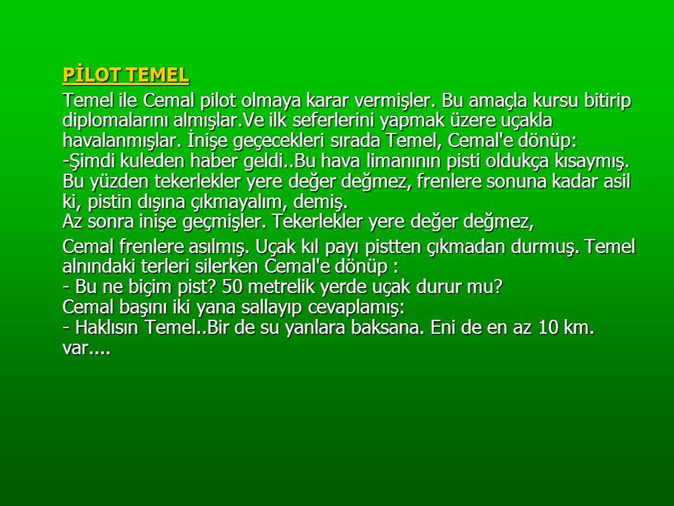 PİLOT TEMEL