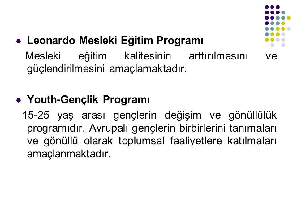 Leonardo Mesleki Eğitim Programı