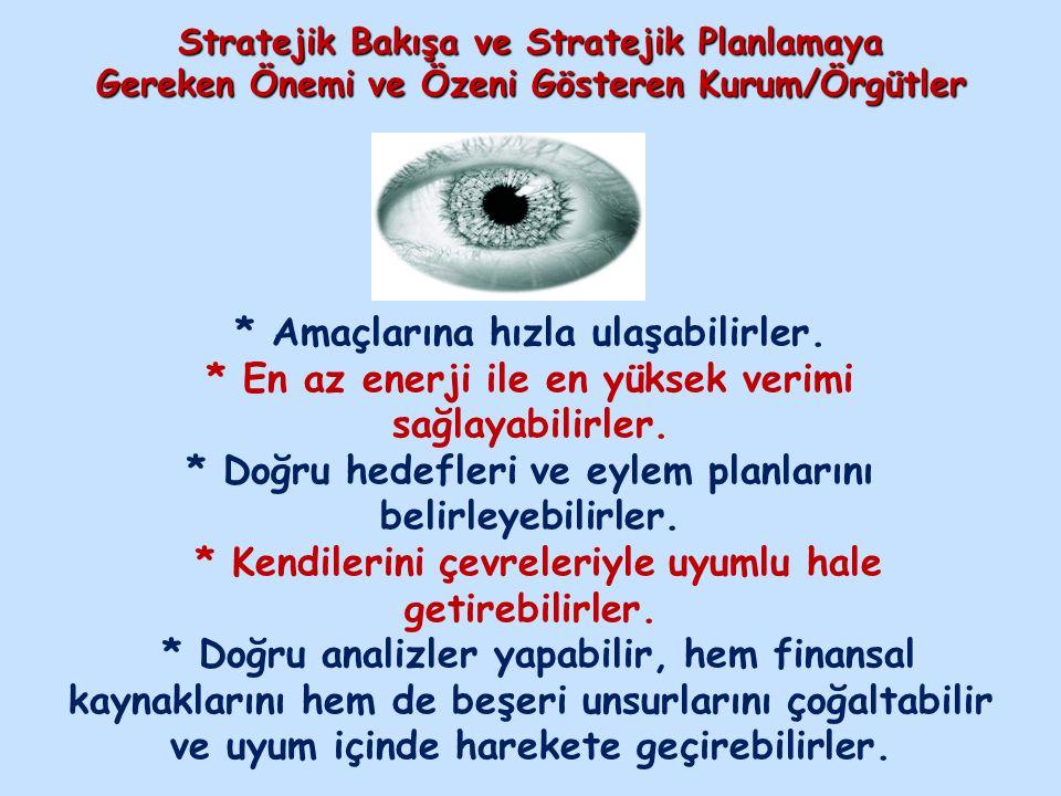 Stratejik Bakışa ve Stratejik Planlamaya Gereken Önemi ve Özeni Gösteren Kurum/Örgütler