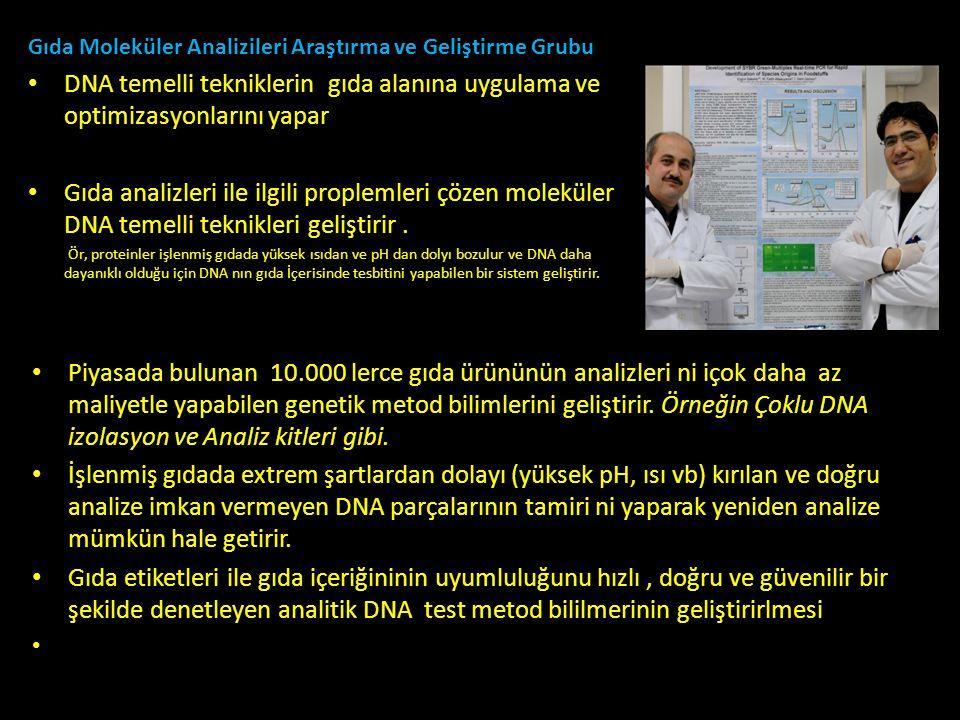 Gıda Moleküler Analizileri Araştırma ve Geliştirme Grubu