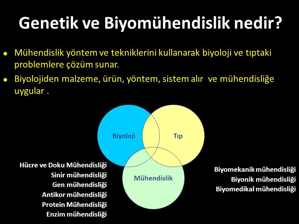 Genetik ve Biyomühendislik nedir