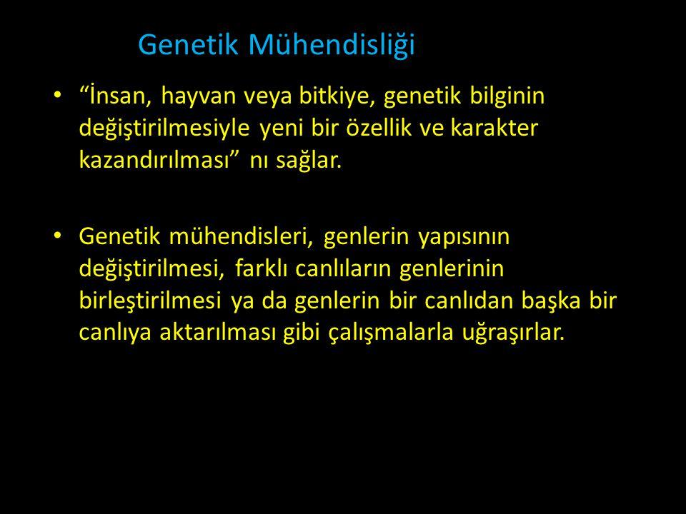 Genetik Mühendisliği İnsan, hayvan veya bitkiye, genetik bilginin değiştirilmesiyle yeni bir özellik ve karakter kazandırılması nı sağlar.