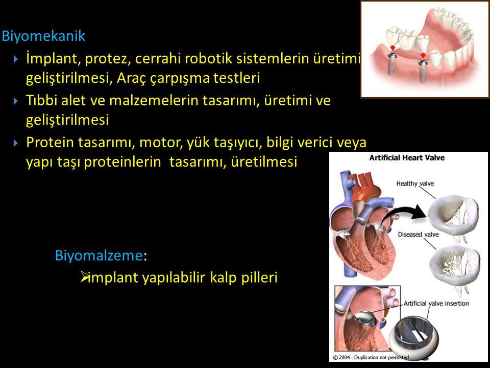 Biyomekanik İmplant, protez, cerrahi robotik sistemlerin üretimi, geliştirilmesi, Araç çarpışma testleri.