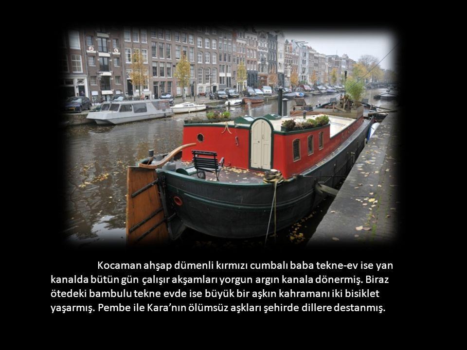 Kocaman ahşap dümenli kırmızı cumbalı baba tekne-ev ise yan kanalda bütün gün çalışır akşamları yorgun argın kanala dönermiş.