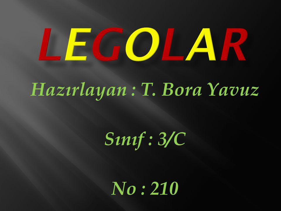 Hazırlayan : T. Bora Yavuz Sınıf : 3/C No : 210