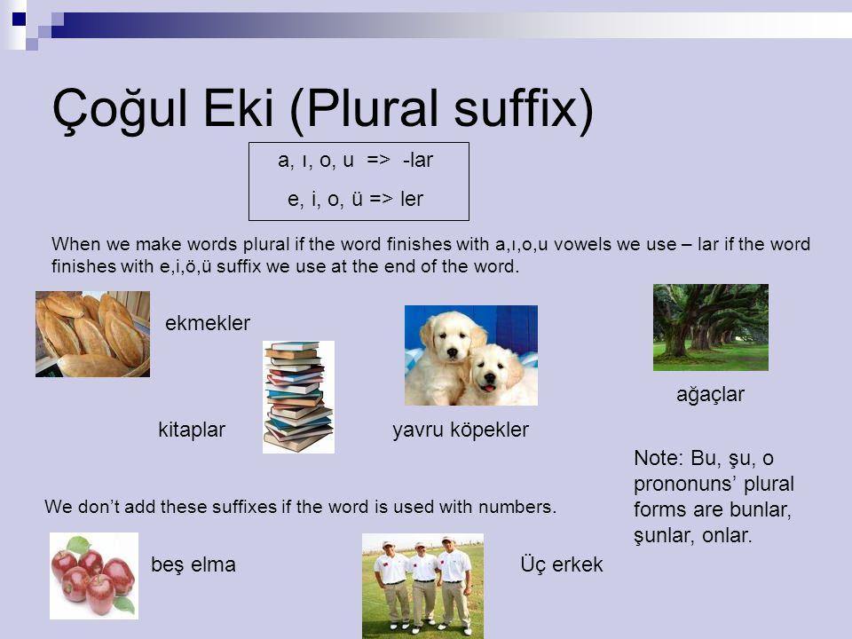 Çoğul Eki (Plural suffix)