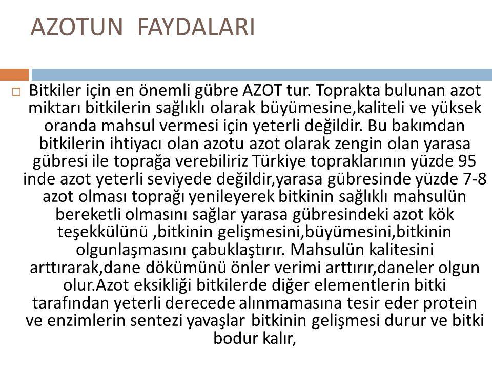 AZOTUN FAYDALARI