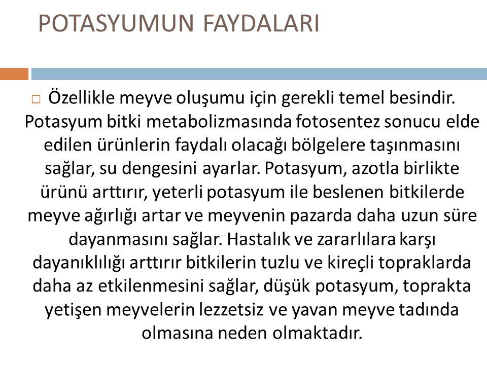POTASYUMUN FAYDALARI