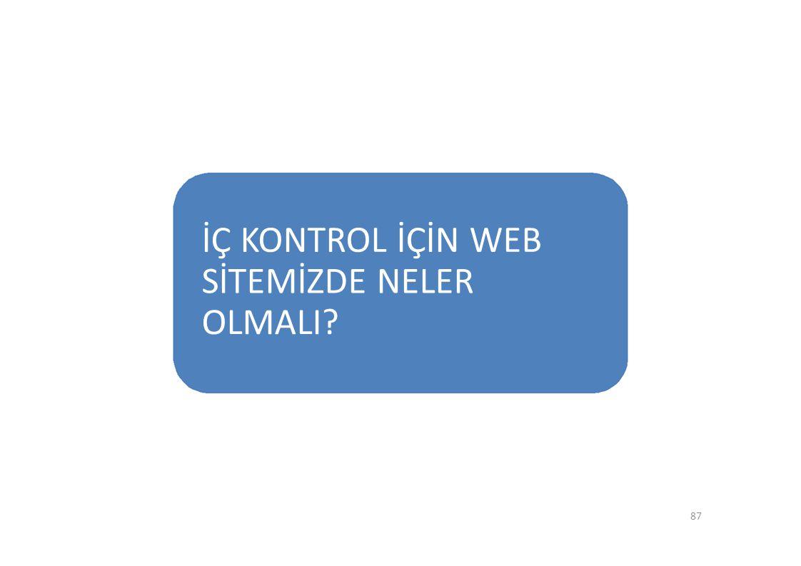 İÇ KONTROL İÇİN WEB SİTEMİZDE NELER OLMALI 87