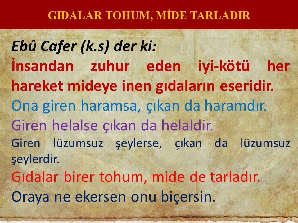 GIDALAR TOHUM, MİDE TARLADIR