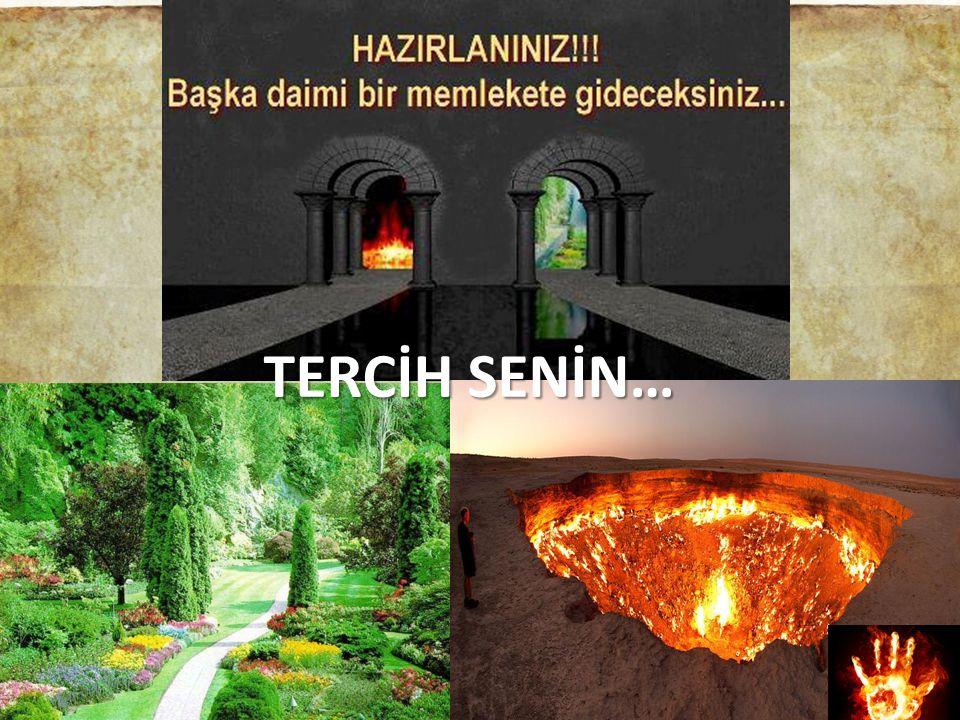 TERCİH SENİN…