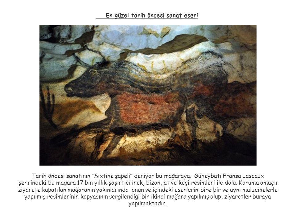 En güzel tarih öncesi sanat eseri