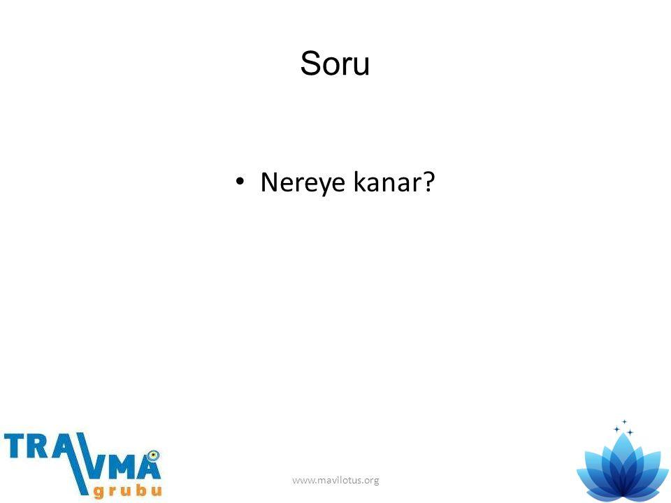 Soru Nereye kanar www.mavilotus.org