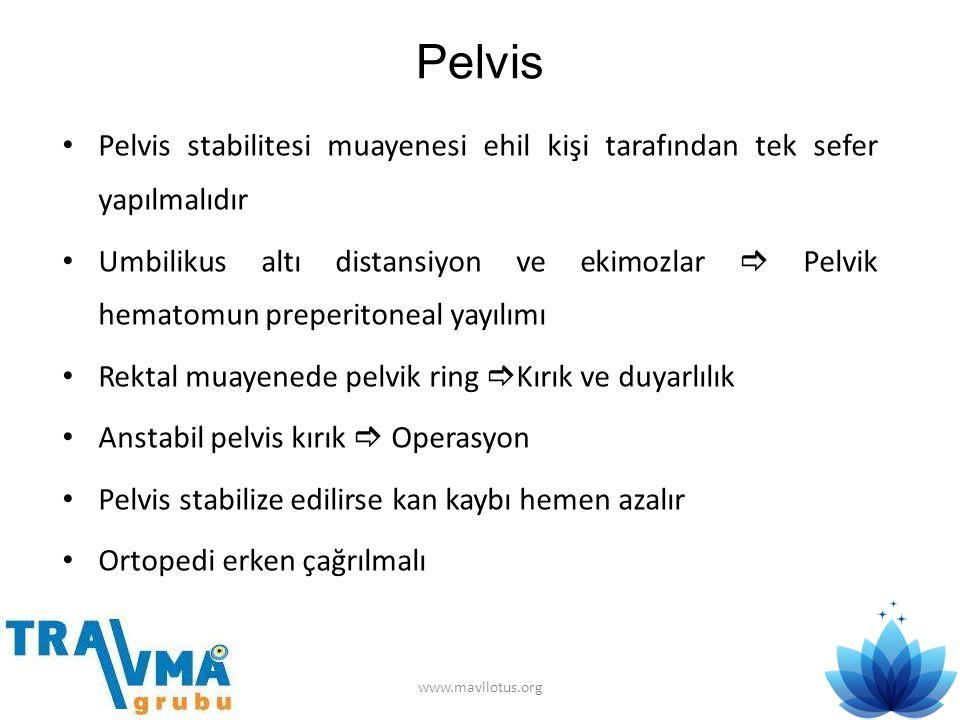 Pelvis Pelvis stabilitesi muayenesi ehil kişi tarafından tek sefer yapılmalıdır.