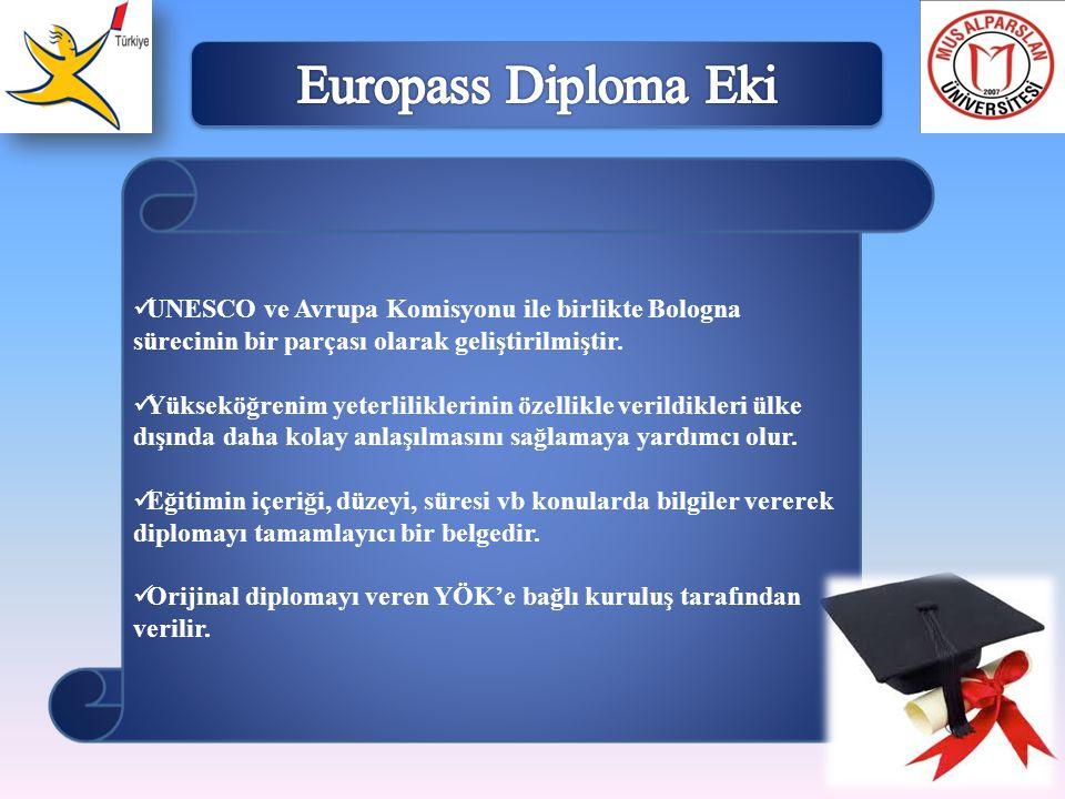 Europass Diploma Eki UNESCO ve Avrupa Komisyonu ile birlikte Bologna sürecinin bir parçası olarak geliştirilmiştir.