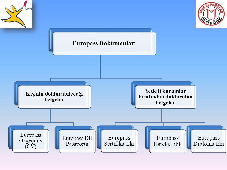 Europass Dokümanları Kişinin doldurabileceği belgeler