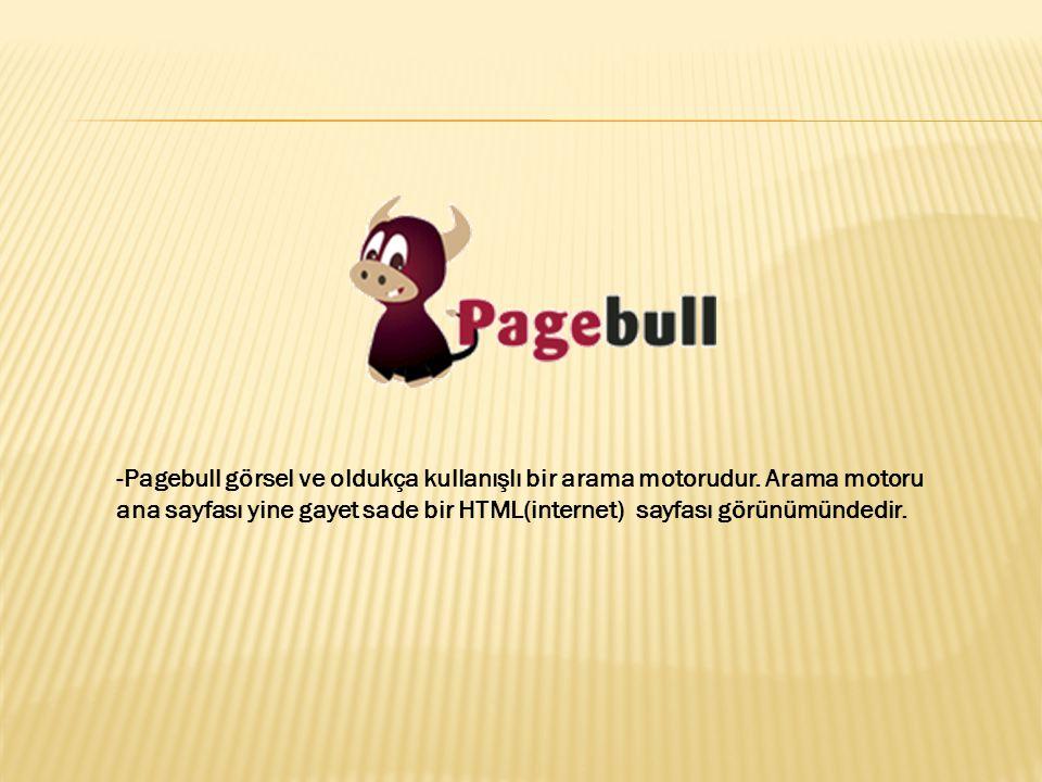 -Pagebull görsel ve oldukça kullanışlı bir arama motorudur