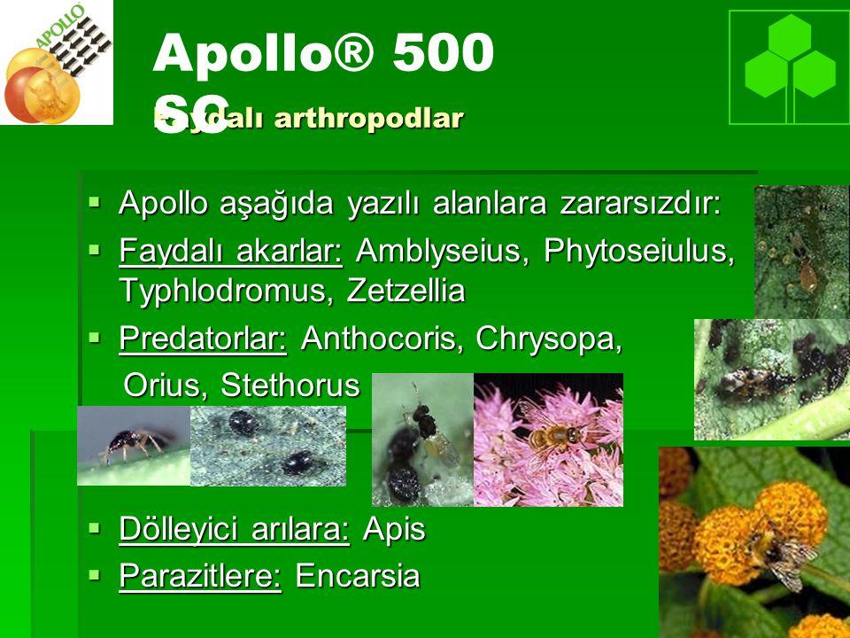 Apollo® 500 SC Apollo aşağıda yazılı alanlara zararsızdır: