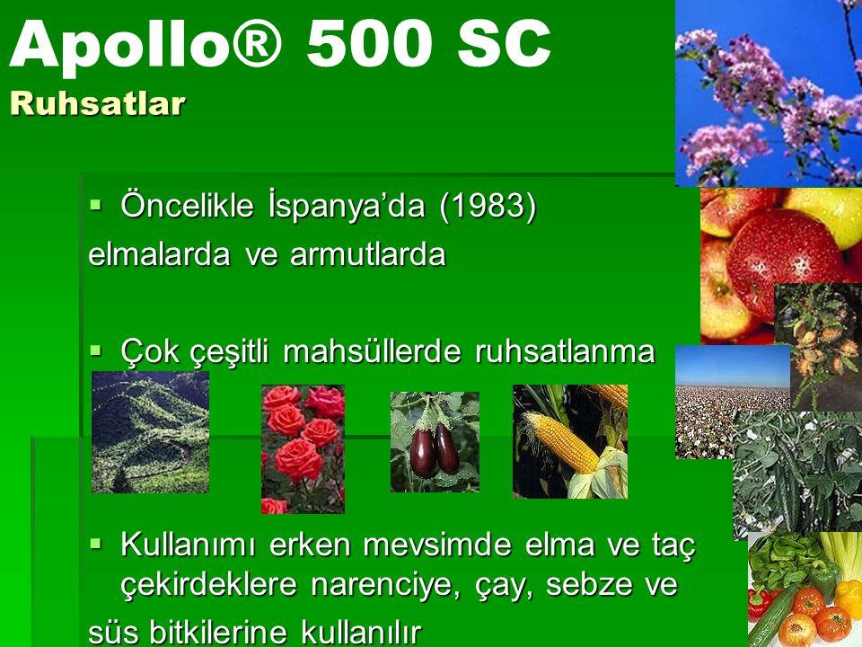 Apollo® 500 SC Ruhsatlar Öncelikle İspanya'da (1983)