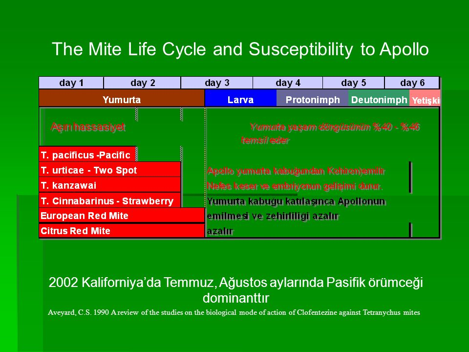 The Mite Life Cycle and Susceptibility to Apollo