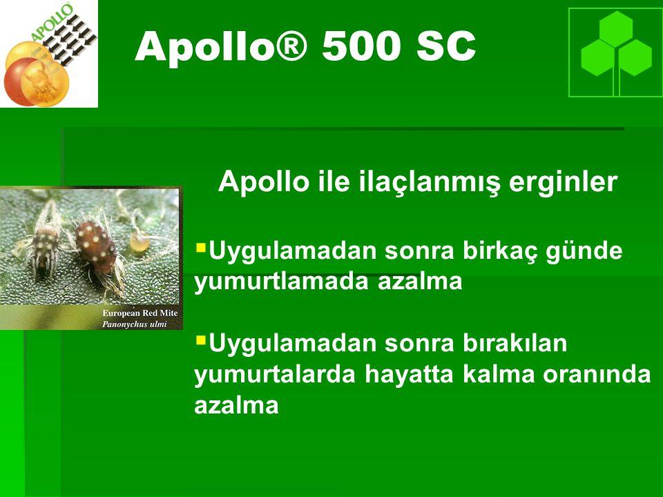 Apollo® 500 SC Apollo ile ilaçlanmış erginler