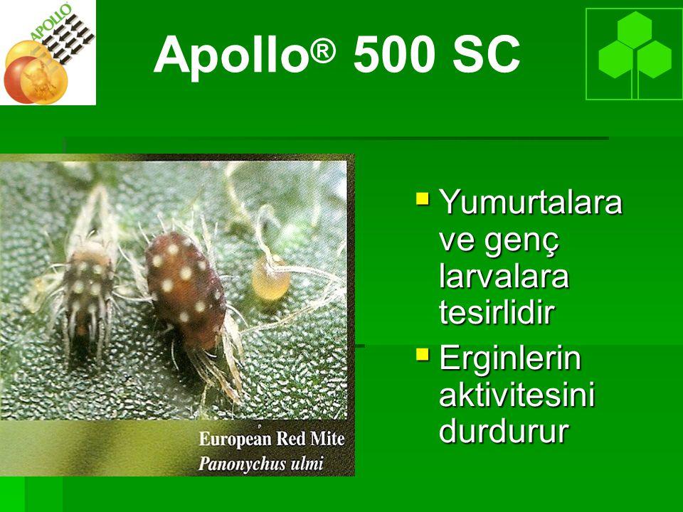 Apollo® 500 SC Yumurtalara ve genç larvalara tesirlidir