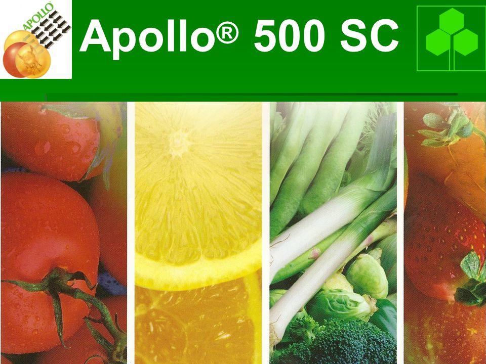 Apollo® 500 SC