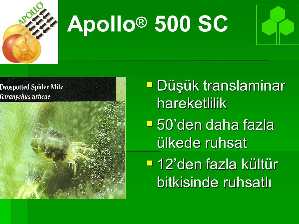 Apollo® 500 SC Düşük translaminar hareketlilik