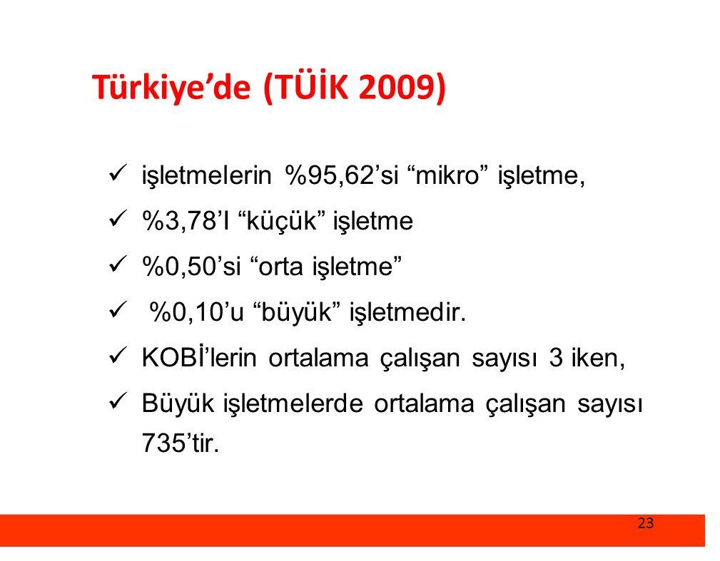 Türkiye'de (TÜİK 2009) işletmelerin %95,62'si mikro işletme,