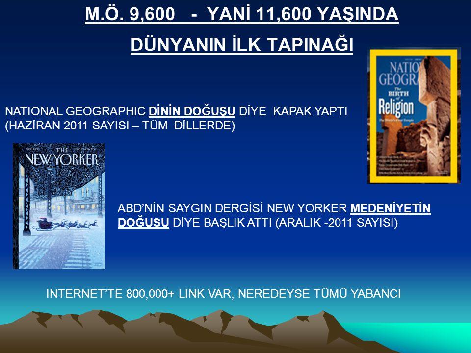 INTERNET'TE 800,000+ LINK VAR, NEREDEYSE TÜMÜ YABANCI