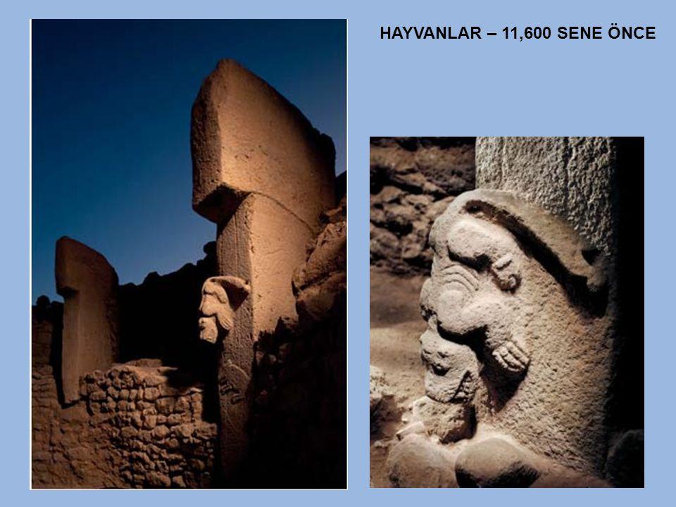 HAYVANLAR – 11,600 SENE ÖNCE