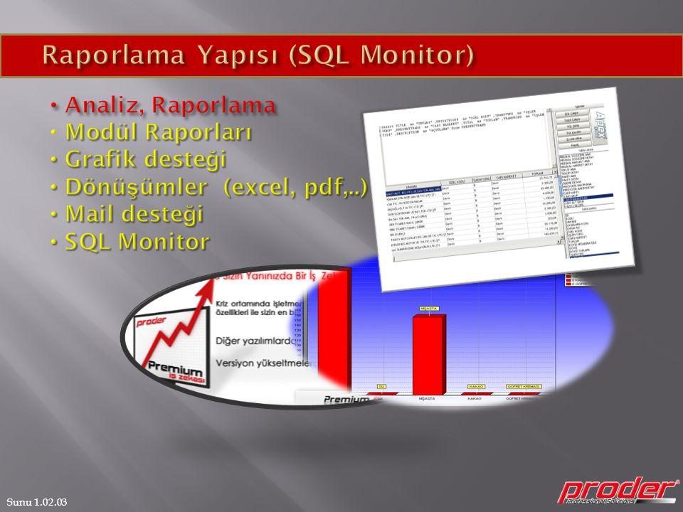 Raporlama Yapısı (SQL Monitor)