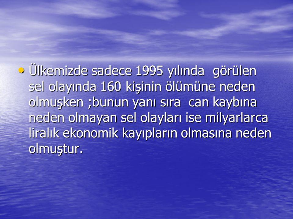 Ülkemizde sadece 1995 yılında görülen sel olayında 160 kişinin ölümüne neden olmuşken ;bunun yanı sıra can kaybına neden olmayan sel olayları ise milyarlarca liralık ekonomik kayıpların olmasına neden olmuştur.